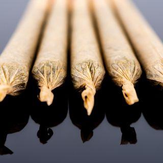 Fumar #cáñamo se está volviendo una tendencia.- Epi 49