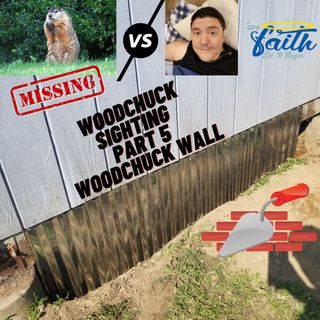 """Woodchuck Sighting Part 5 """"Check out the Wall"""""""