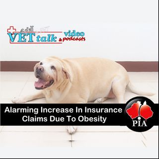 Insurance Claims Dramatic Increase Due To Obesity - Nadia Crighton