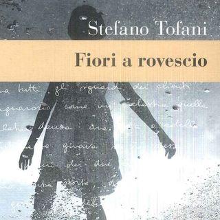 """Stefano Tofani """"Fiori a rovescio"""""""