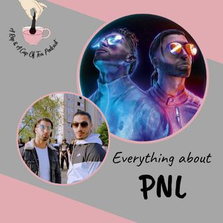 Everything about PNL!