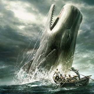 MondoRoma - Roma, una balena ferita