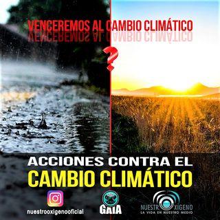 NUESTRO OXÍGENO Acciones contra el cambio climático