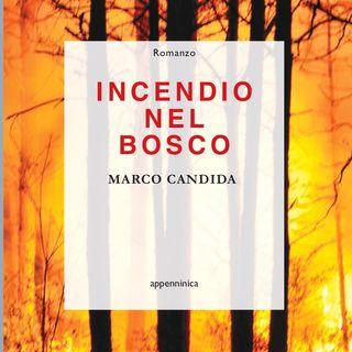 """Marco Candida """"Incendio nel bosco"""""""