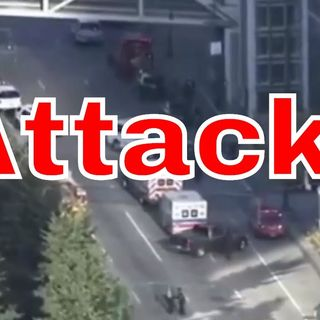 New York Terror Attack: facts, actual footage and political action
