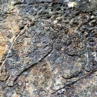I graffiti della Val d'Assa