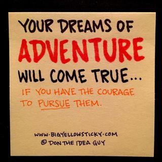 Pursue Adventure : BYS 294