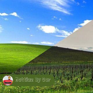Episodio 55 - Ecco Com'è Oggi L'iconica Collina Di Windows XP