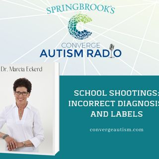 School Shootings: Wrong Diagnosis and Labels