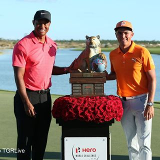 Rickie Wins Tiger Solid