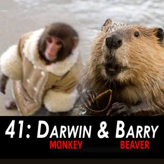 41 - Darwin & Barry