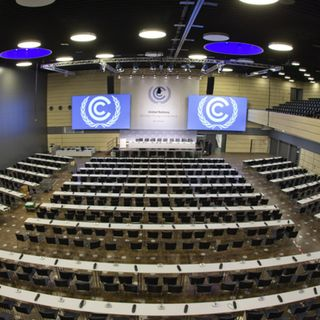Endangered - COP23, nulla da segnalare