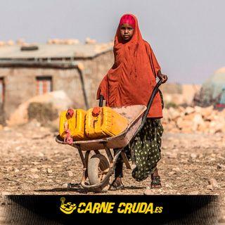 Refugiados climáticos: Migrantes del calentamiento global (CARNE CRUDA #946)