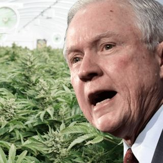 The Sessions Marijuana Enforcement Deception