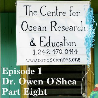 Stoa Scleractinia Ep 1, Part 8 - Dr. Owen O'Shea on how to get involved in marine conservation