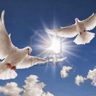 L334: Hoy reclamó los regalos que el perdón otorga