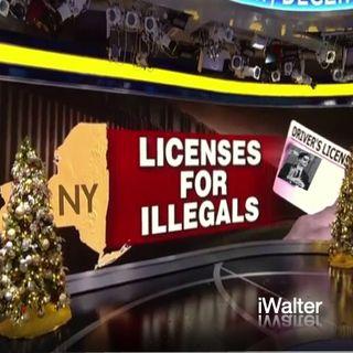iWalter - illegals In New York