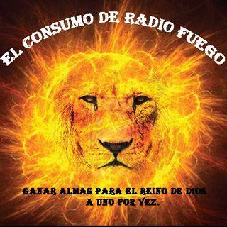 EL CONSUMO DE RADIO FUEGO