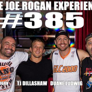 #385 - Duane Ludwig, TJ Dillashaw