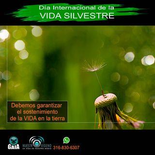 NUESTRO OXÍGENO Día internacional de la vida silvestre
