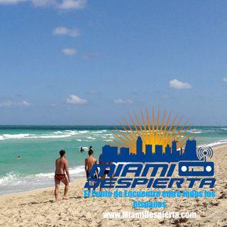 Nitu Perez en Miami Despierta