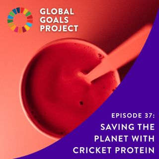 Saving the Planet with Cricket Protein [Episode 37]
