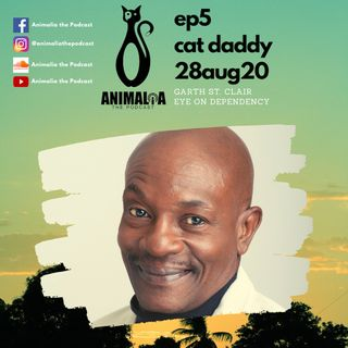ANIMALIA 05 - Cat Daddy - 28Aug20