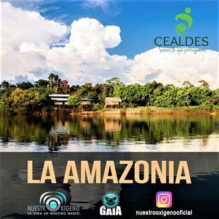 NUESTRO OXÍGENO Sebastián Gómez y la Amazonía