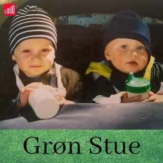 Grøn Stue #2 Hvorfor lave klimamarcher og protester? v. Sofie Risager Villadsen