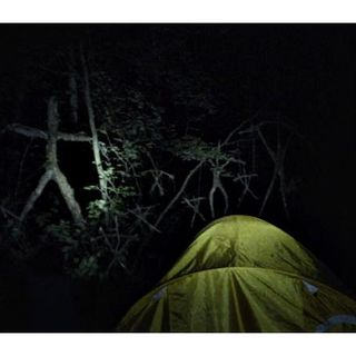 Cinema Royale #15 Gets Spooked By 'Blair Witch', Takes Off With 'Sully'
