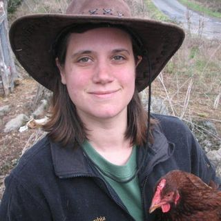 Aquaponics for Preppers Part 4: The Harvest With Nicole Sauce