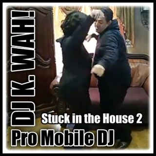 Stuck in the House 2 (The Freestyle Mix)