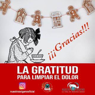 NUESTRO OXÍGENO Gratitud para limpiar el dolor - Psicóloga Elvira Mora - Valor la Gratitud