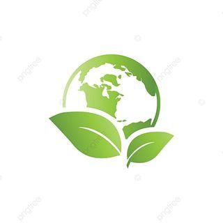 Contaminación del aire: acciones para mitigar sus efectos.