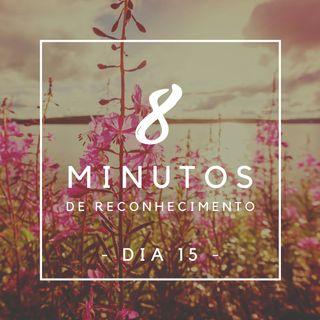 8 Minutos de Reconhecimento - Dia 15