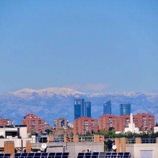Miscelánea sin contaminación en Madrid   Diario de un Ecólogo #09