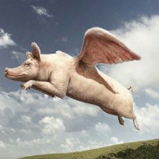 EPR:pigs Jump To Radio