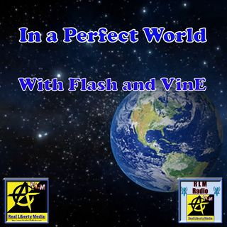In A perfect World | Contrasting the Occupation w Flash and VinE - Oct. 2, 2018