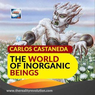 Carlos Castaneda The World Of Inorganic Beings
