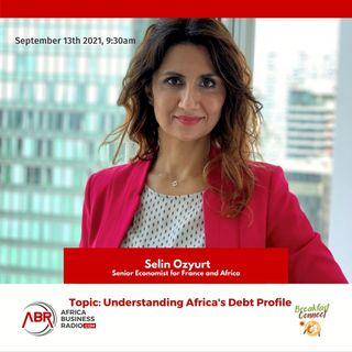 Understanding Africa's Debt Profile - Selin Ozyurt