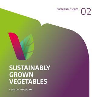 Groente telen in de kas - met René Kalter (#SustainableSeries)