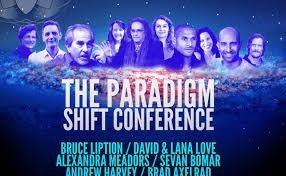 Universal Soul Love - Lana and David's Paradigm Shift Conference Presentation