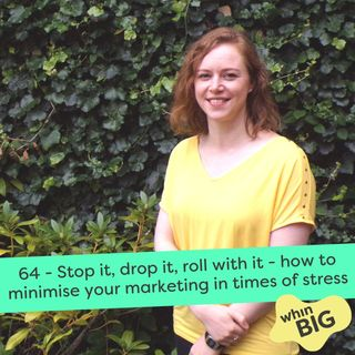 64 - Stop it, drop it, roll with it - how to minimise your marketing in times of stress