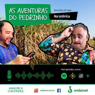 Episódio 2 - As aventuras do Pedrinho.mp3