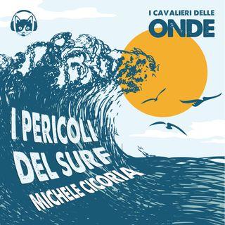 I pericoli del surf - Michele Cicoria