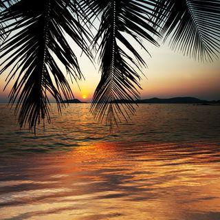 Suoni della natura per meditare: spiaggia tropicale