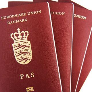 Hvor svært skal det være at blive dansk statsborger?