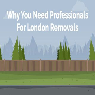 Why You Need Professionals For London Removals