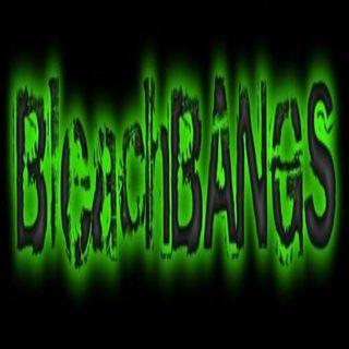 BleachBANGS™