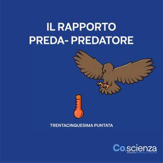 Il Rapporto Preda - Predatore (Trentacinquesima Puntata)
